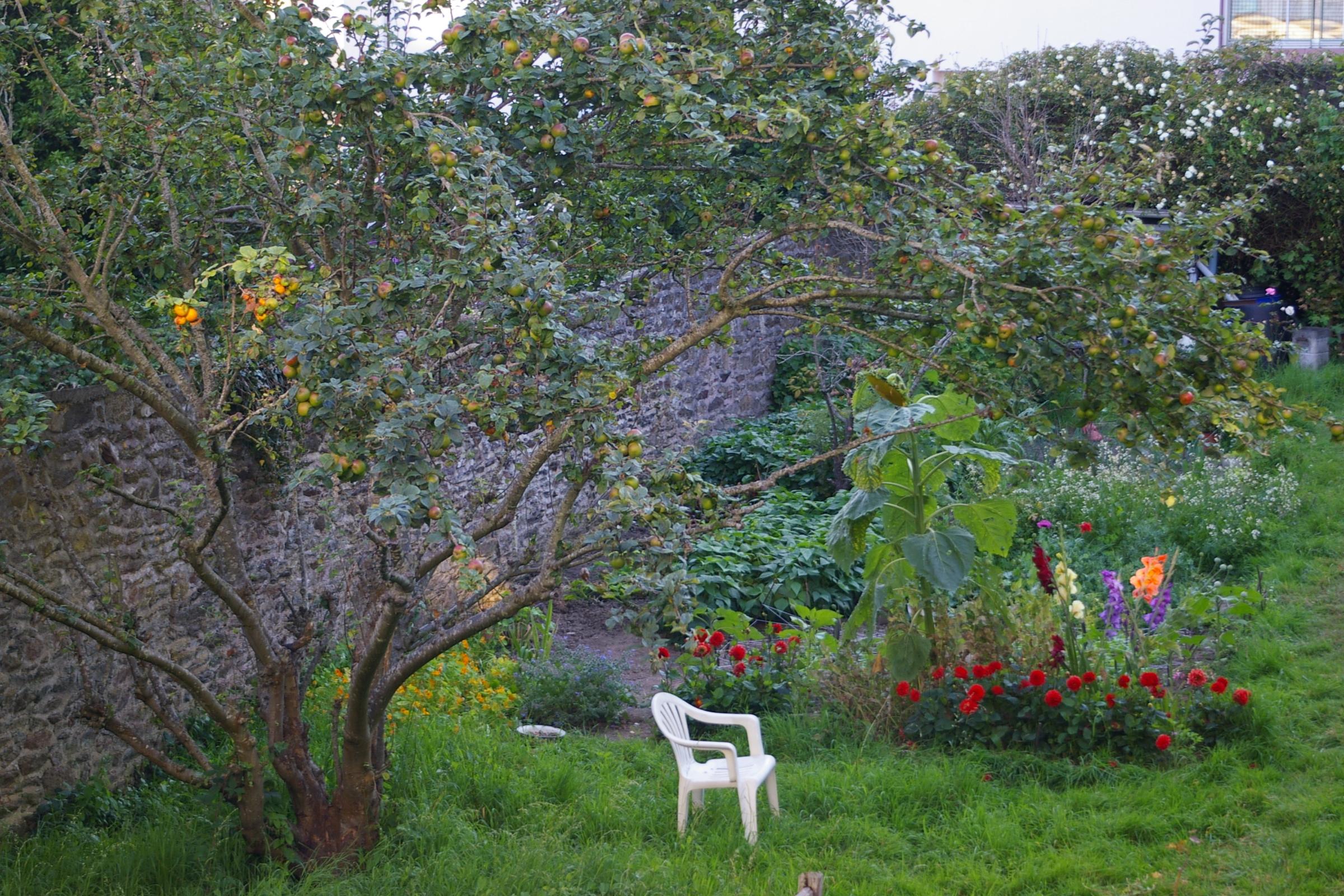 Jardin capucine brest vert le jardin for Jardin kennedy brest