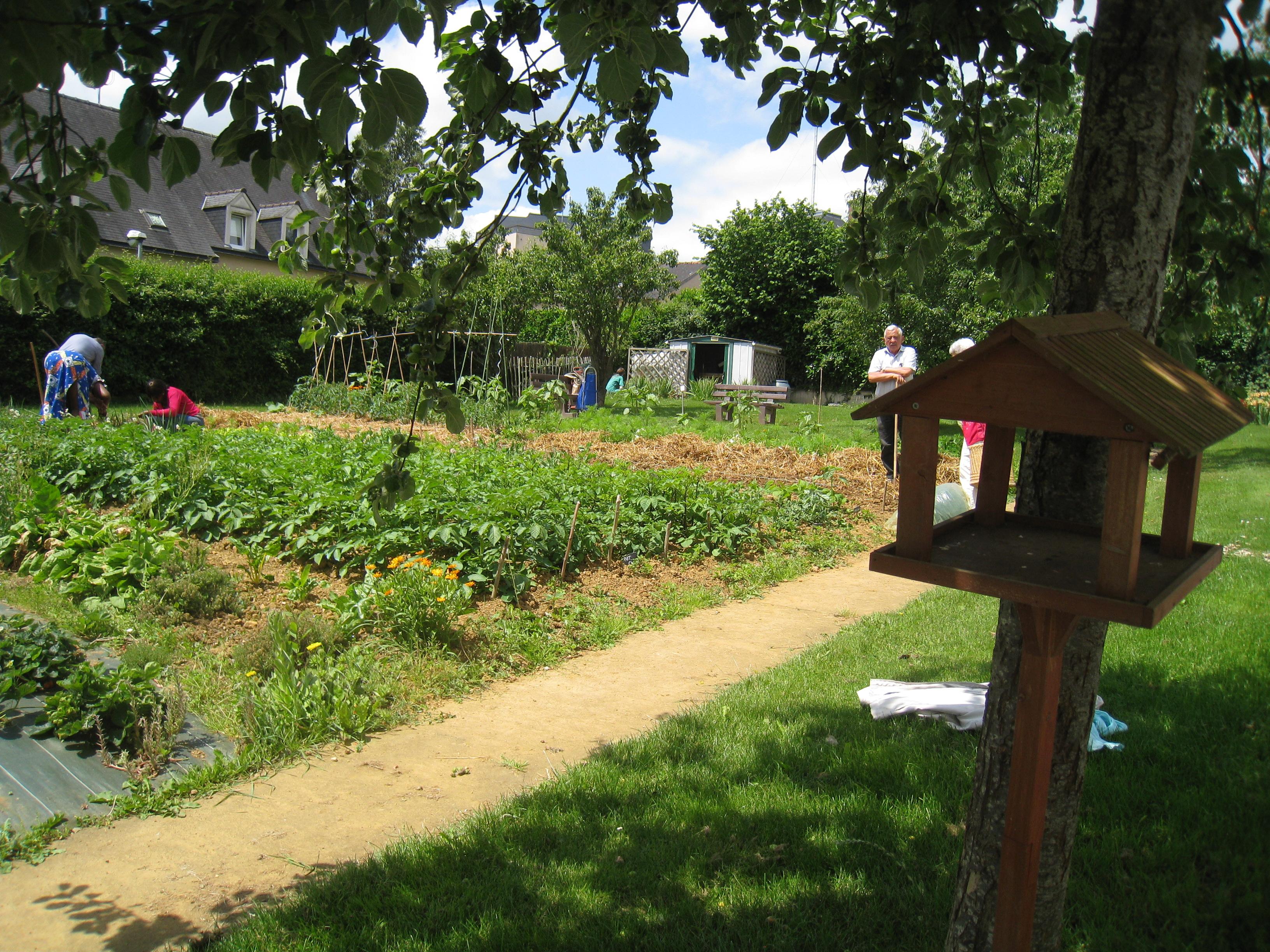 Jardin partag de bruz vert le jardin for Le jardin d alphonse