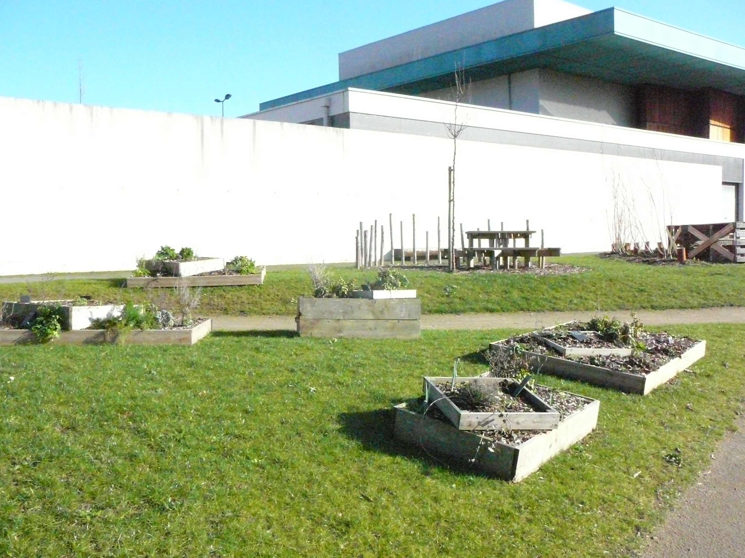 Jardin extraordinaire plerin vert le jardin for Jardin extraordinaire